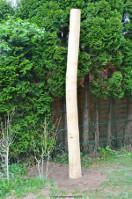 Robinien Pfosten für Sonnensegel einbetoniert